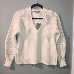 NWT Everlane V-Neck Sweater